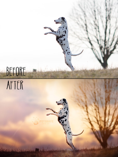 Before_After12.jpg