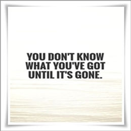 Its All About Will Of People Until It >> The Truth Behind You Don T Know What You Have Until It S Gone