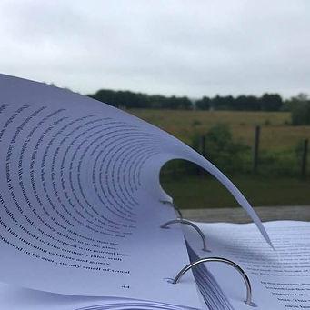 Book in Wind.jpg