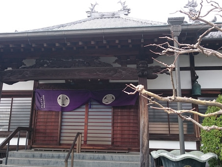 富士市 ヨガ教室 4月日程