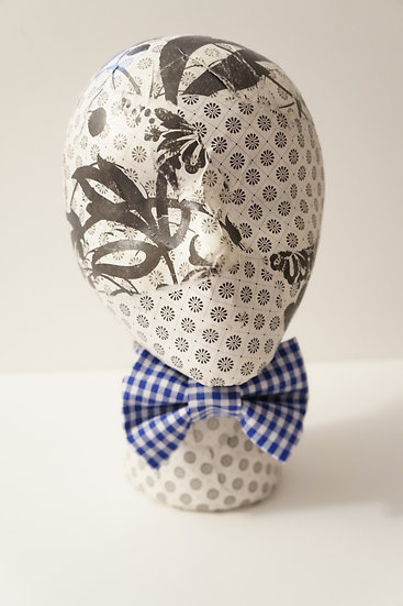 Boy's Blue Gingham Bow Tie