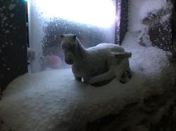 Schnee Pferd.jpeg