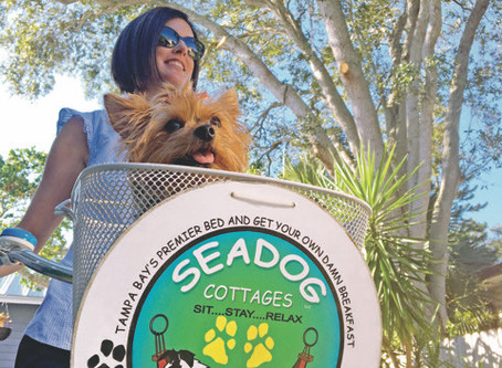 Dressing for Seadog Success.