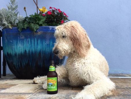 Grrr, Mateys! Seadog is Growing Up.