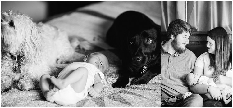 dogs-with-baby-at-appleton-newborn-session-by-green-bay-wedding-photographer-kyra-rane-photography