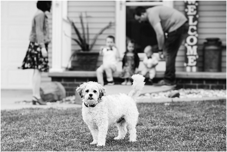 little-white-dog-in-front-of-family-at-the-front-porch-series-by-appleton-wedding-photographer-kyra-rane-photography