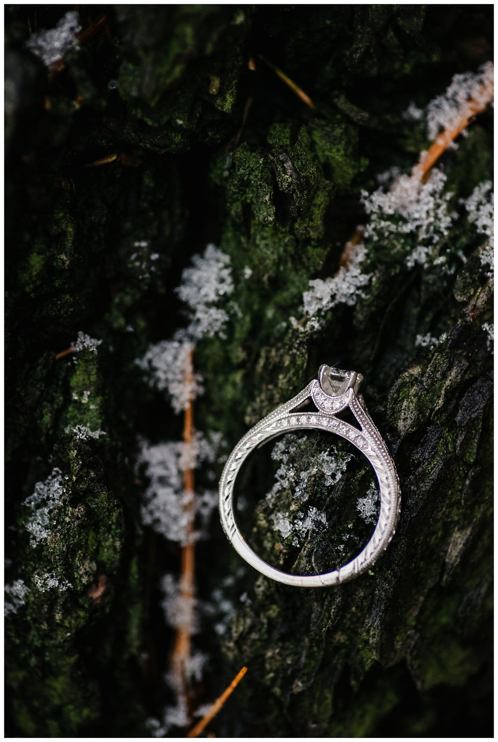 engagement-rig-in-snow-and-moss-at-snowy-sheboygan-engagement-session-by-green-bay-wedding-photographer-kyra-rane-photography