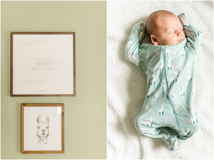 sleeping-baby-in-llama-onesie-at-racine-newborn-session-by-appleton-wedding-photographer-kyra-rane-photography