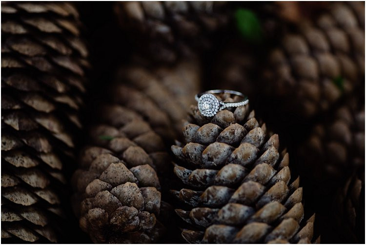 engagement-ring-on-pinecones-at-hortonville-engagement-session-by-green-bay-wedding-photographer-kyra-rane-photography