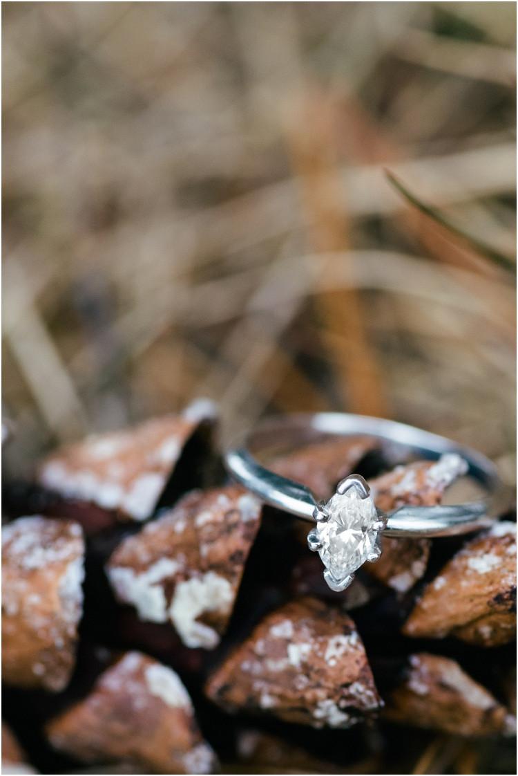 engagement-ring-on-pinecone-at-northwoods-lakeside-engagement-session-by-appleton-wedding-photographer-kyra-rane-photography