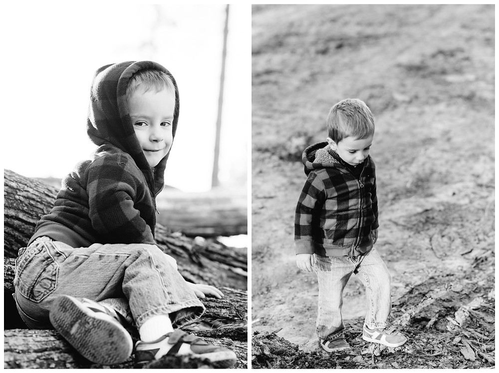 boy-sitting-on-logs-at-northwoods-lifestyle-session-by-green-bay-wedding-photographer-kyra-rane-photography