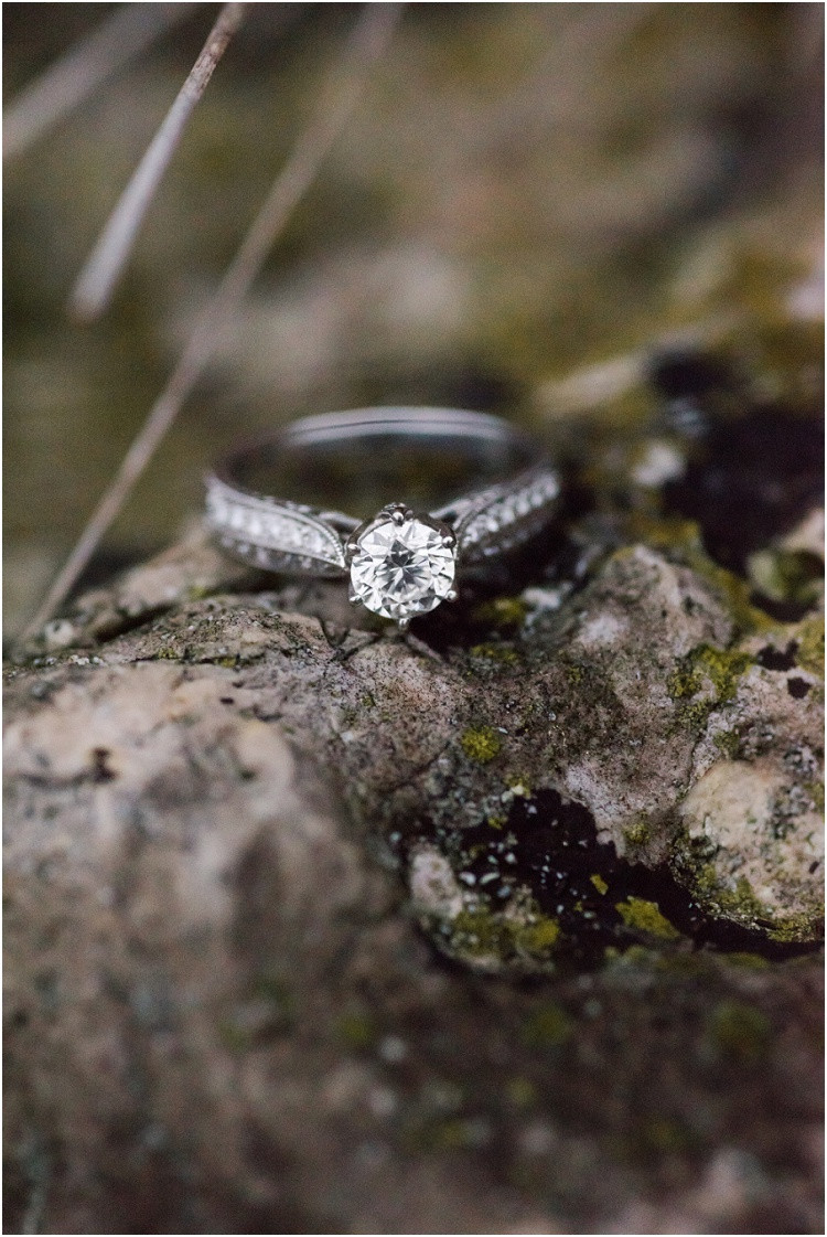 engagement-ring-on-log-at-high-cliff-engagement-session-by-appleton-wedding-photographer-kyra-rane-photography