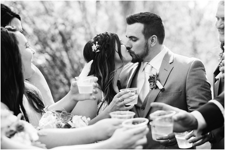 wedding-party-toasts-for-bride-and-groom-kiss-at-de-pere-wisconsin-wedding-by-appleton-wedding-photographer-kyra-rane-photography
