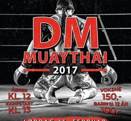 DM i Muay Thai