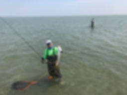 Wading for Redfish