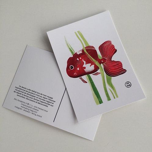 Carte Postale Japon - Poisson