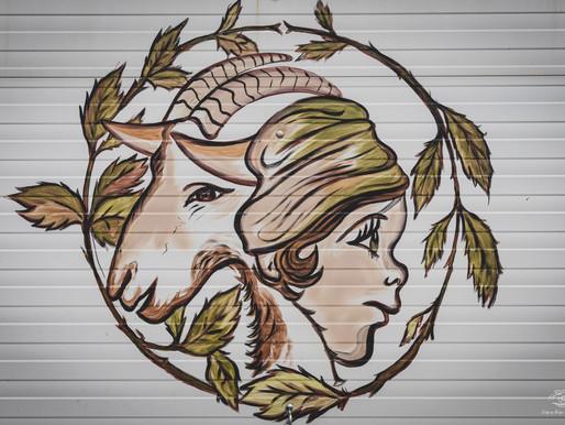La chèvrerie d'Isabelle Biessy - Les Bêêh rodent