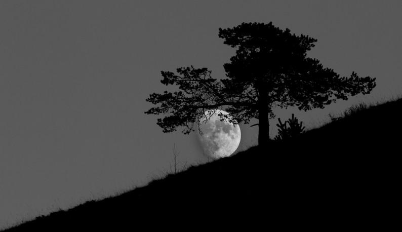 Moon équilibre