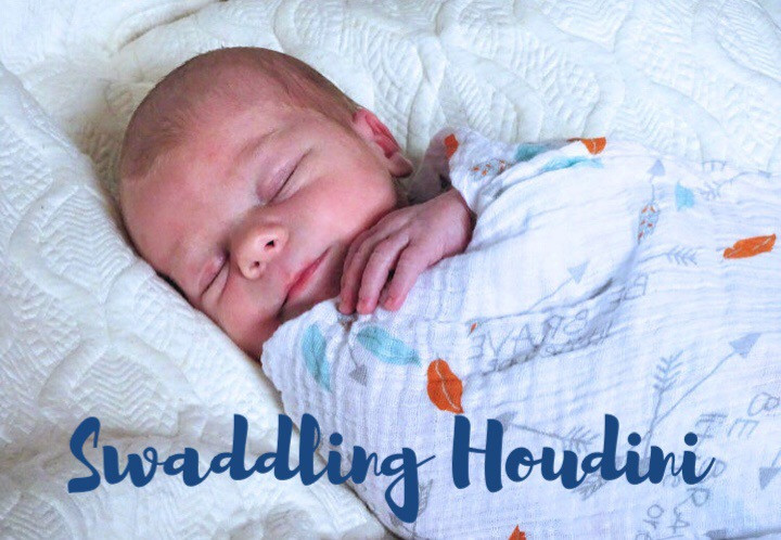 what's the best swaddle, best baby swaddle, how to swaddle baby, Little Bell Sleep Solutions, my baby gets out of swaddle, how to keep baby from getting out of the swaddle