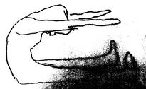 pilates braunschweig, spine stretch foreward