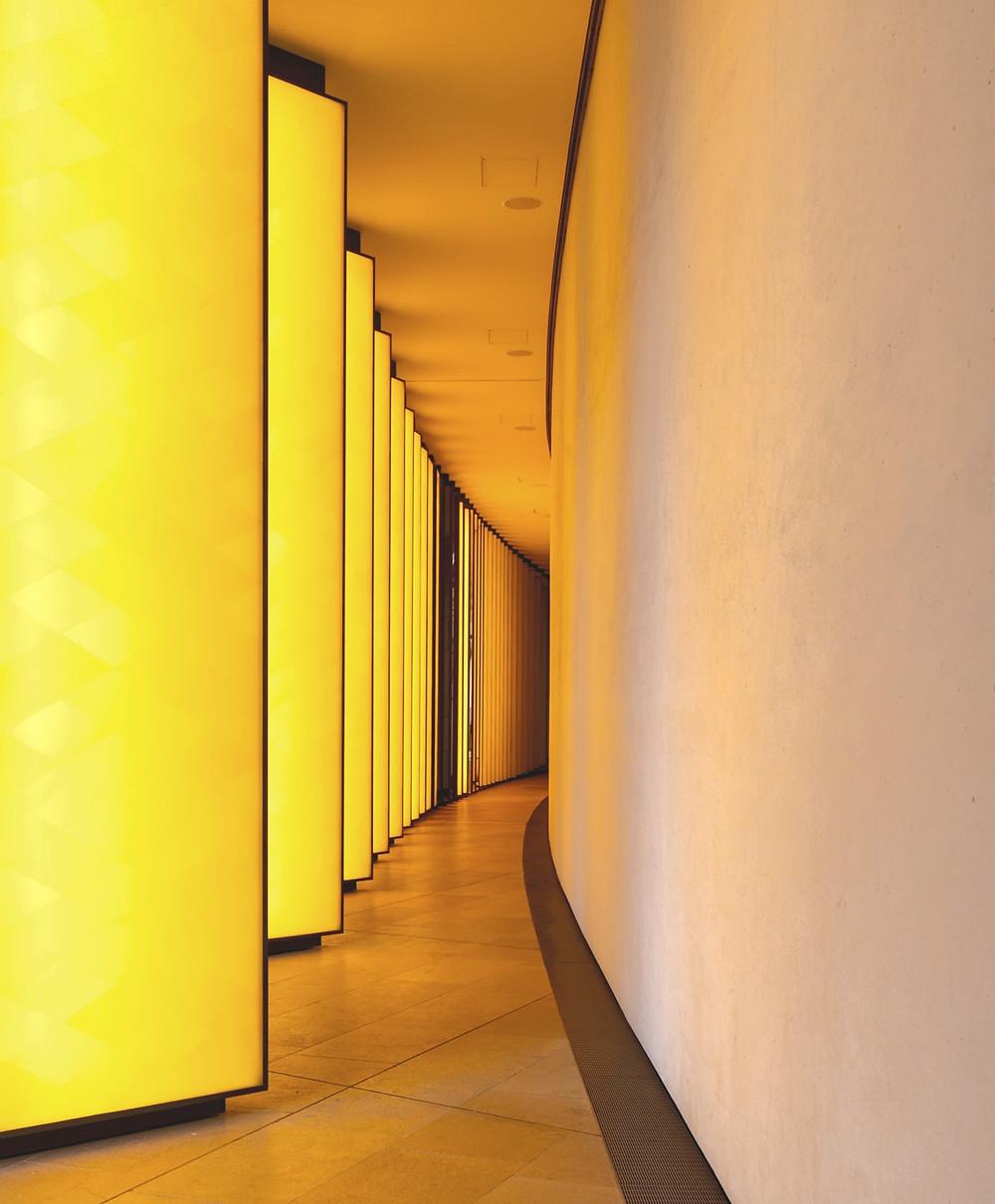 hallway, biophilia, biophilic design