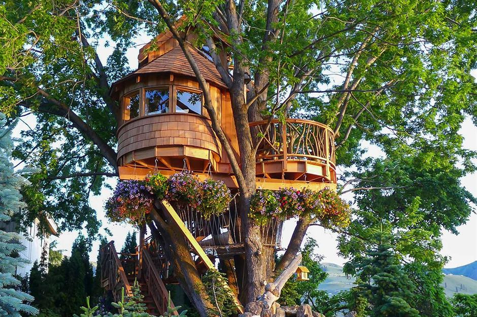 treehouse building permit