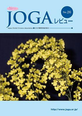 JOGA26.jpg