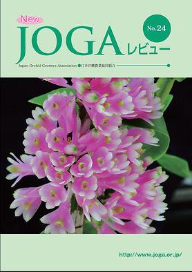 JOGA24.jpg