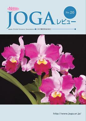 JOGA20.jpg