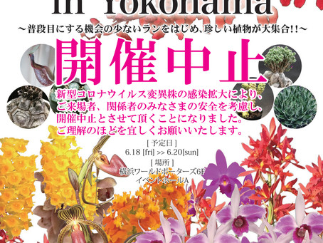 【開催中止となりました。】JOGA洋らんフェア2021 in Yokohamaのお知らせ