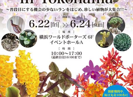 【終了】JOGA洋らんフェア2018 in YOKOHAMA