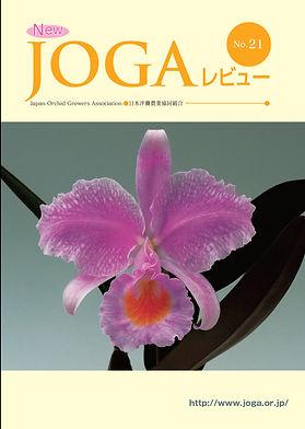 JOGA21.jpg