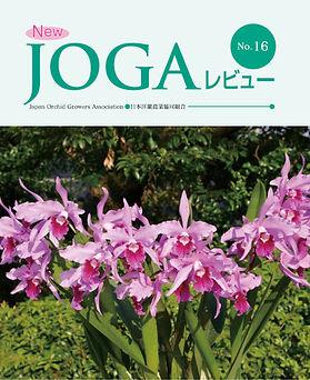 JOGA16.jpg