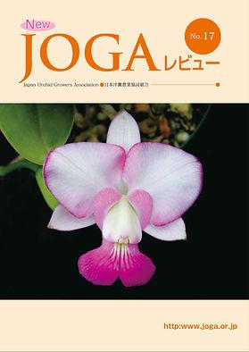 JOGA17.jpg