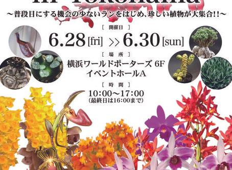 【終了】JOGA洋らんフェア2019 in YOKOHAMA