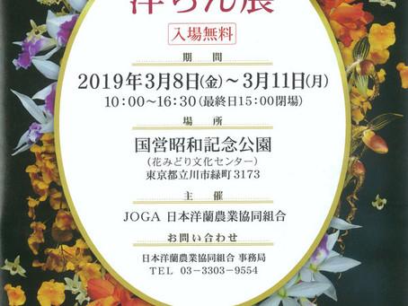 【終了】第73回 JOGA洋らん展のお知らせ!
