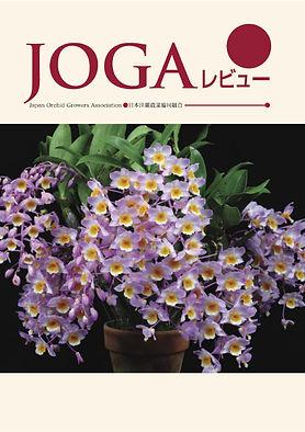 JOGA15.jpg