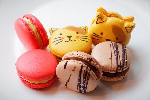 Macarons (Online)_edited.jpg