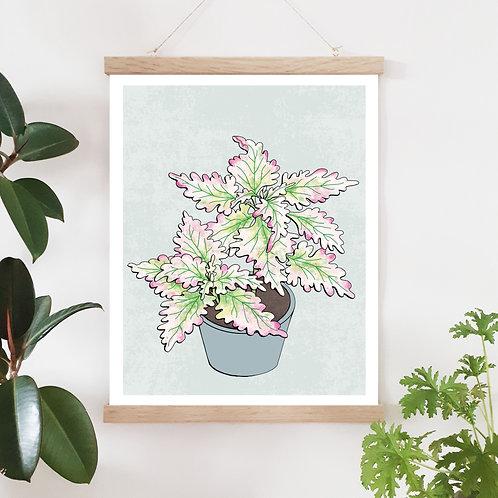 Palettblad Flora