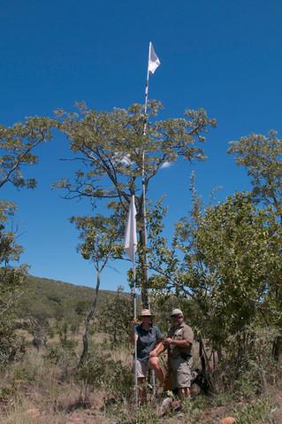 Raising Flags