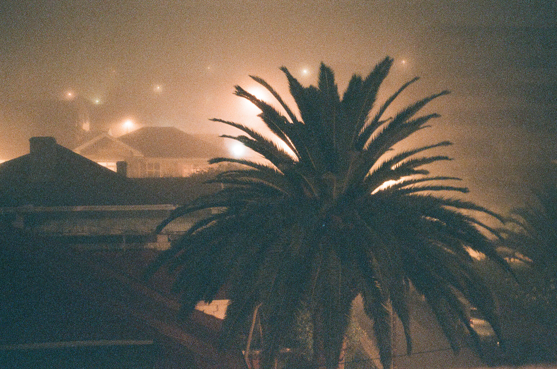 Foggy Seapoint // Cape Town
