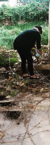 Setting the peat