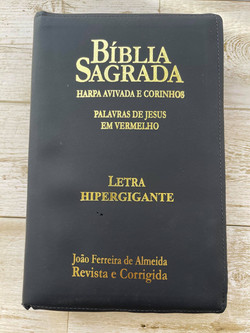 biblia com harpa