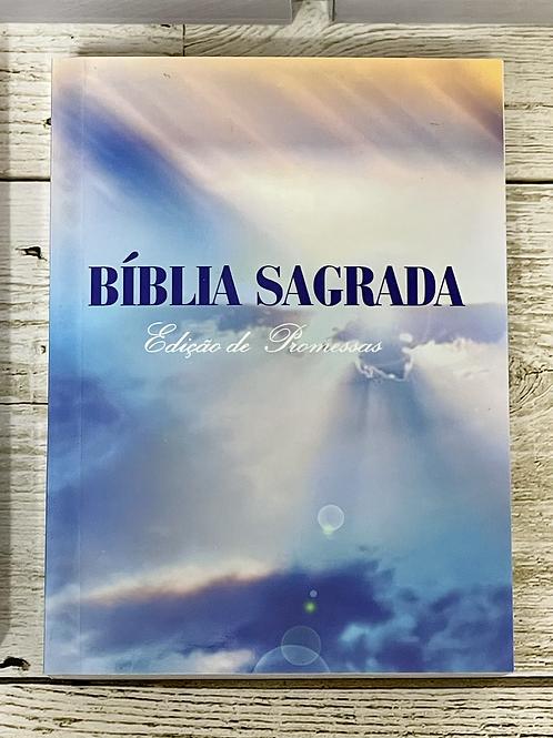 BIBLIA EVANGELISMO