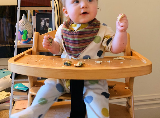 Raising a child on a Plant-Based Diet