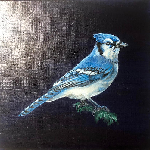 """""""Blue Jay"""" Painting"""