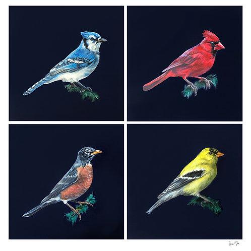 """Backyard Birds"" Print"