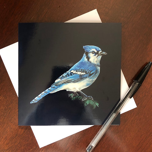 Backyard Birds Greeting Card Set