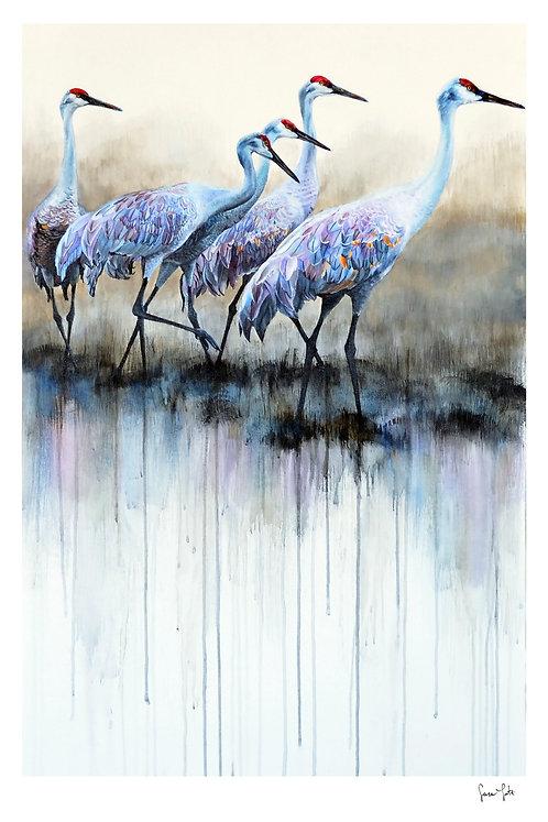 """Sandhill Cranes"" Print"