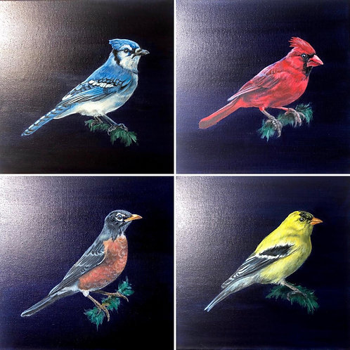 """Backyard Birds"" Set of 4 Paintings"